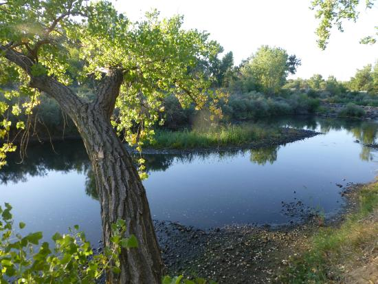 South Platte Park and the Carson Nature Center