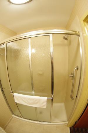 Holiday Inn Richmond Airport: shower_