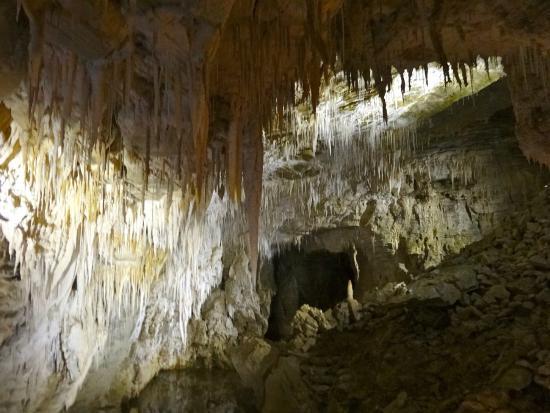 Ruakuri Walk: Lots of stalactites and stalagmites, plus Glowworms!