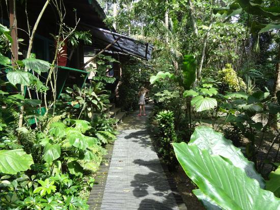 Playa Chiquita Lodge: Aussicht