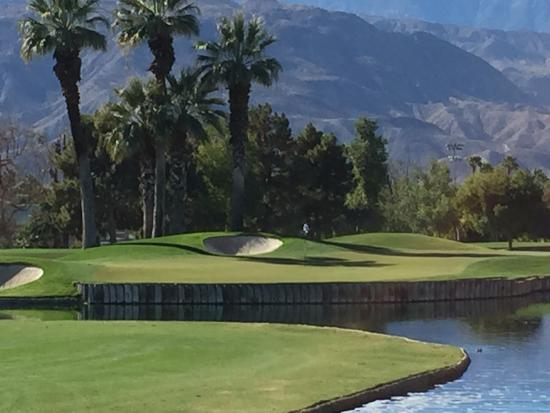 Palm and Valley Golf Courses at Desert Springs: Beautiful all around!