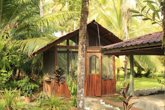 Sabalo Lodge: Officina