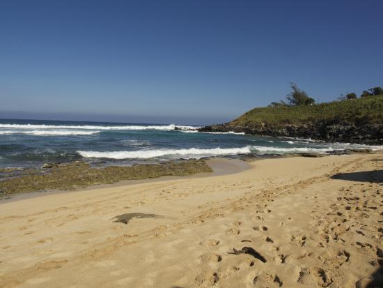 Paia, Hawái: Hookipa beach towards lookout