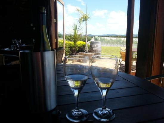Omata Estate Vineyard : relaxing afternoon