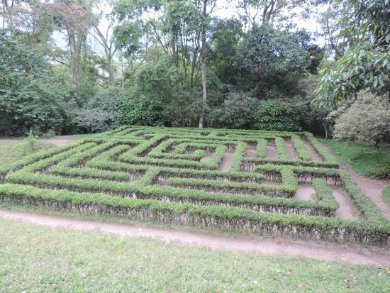 Foto de jardin botanico del quindio calarc laberinto for Jardin laberinto