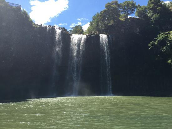 Whangarei Falls pool