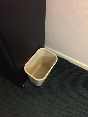 Magnuson Grand Pioneer Inn and Suites: No bags in garbage