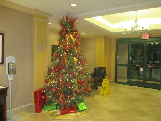 holiday inn express hotel suites florence i 95 hwy 327 christmas tree - Christmas Tree Inn