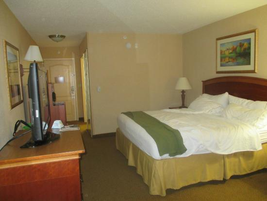 Holiday Inn Express Hotel & Suites Florence I-95 @ Hwy 327: King room