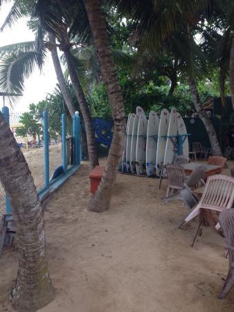 Samaru Beach House: Доски