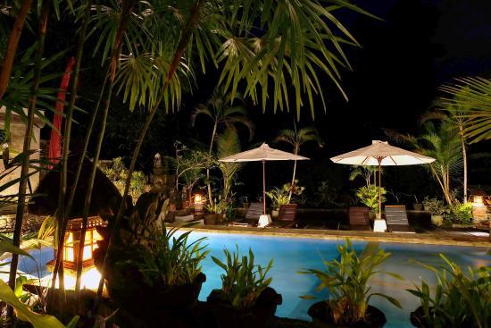 Ketut's Place: Swimming pool at night
