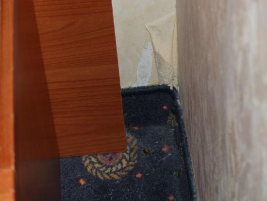Roma Domus Hotel : Pokój nr 206...o innych nie będę pisał bo w nich nie byłem
