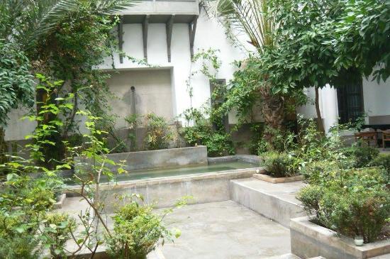Zaouia 44: Le patio pour se délasser