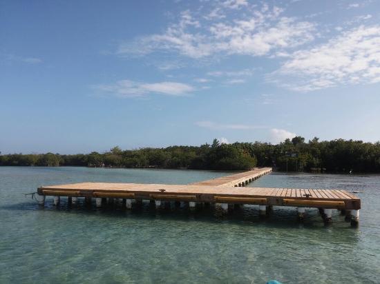 Gilligan's Island : Gilligan,s docking area, the door to a magnificent adventure.