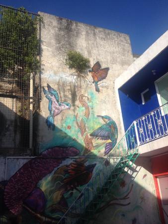 Orquideas Hostel: El mural de colibríes