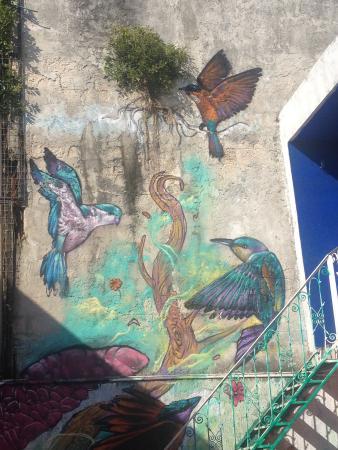 Orquideas Hostel: Mural
