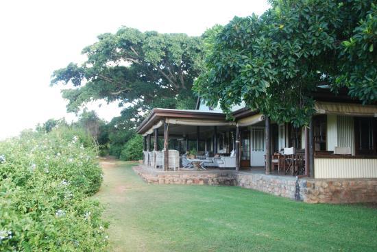 Camp Figtree : Restaurant