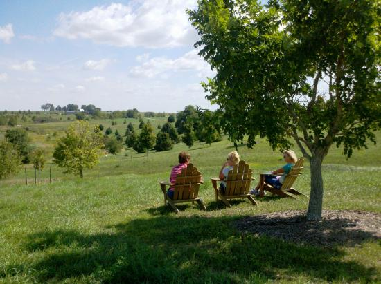 Dallas Center, IA : Relax with Friends