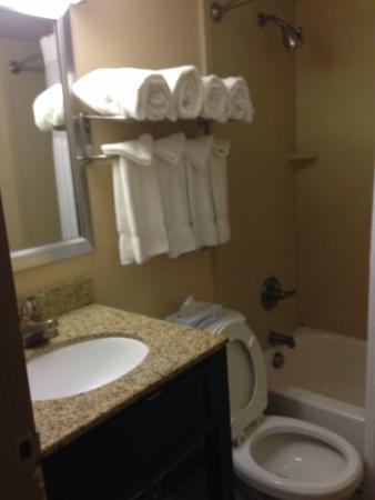 Clarion Inn & Suites Virginia Beach: Bathroom