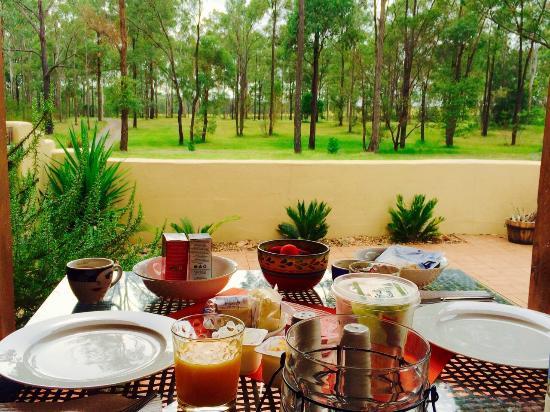 Casa La Vina : Breakfast on the terrace