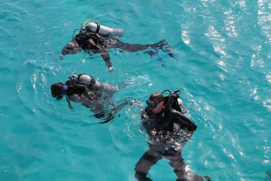Funnydivers Diving Center: Первое погружение