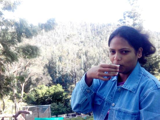 United-21 Paradise, Ooty: My wife having tea in d middle of tea garden