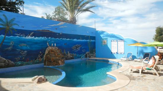Posada LunaSol Hotel : Our new pool and Sea of Cortez mural