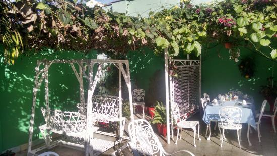 Casa Caridad: garden