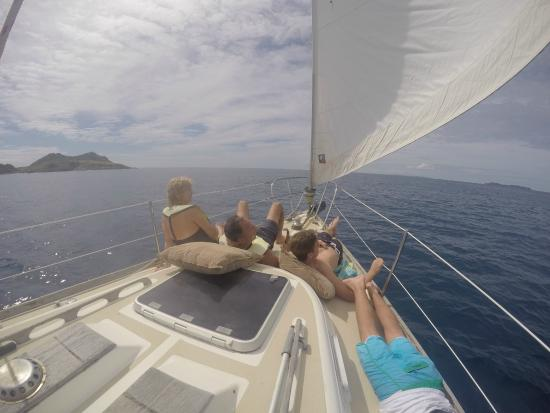 Virgin Islands Day Sailing: catching rays on the bow