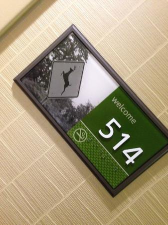 Hampton Inn Pigeon Forge : Highest floor in the hotel