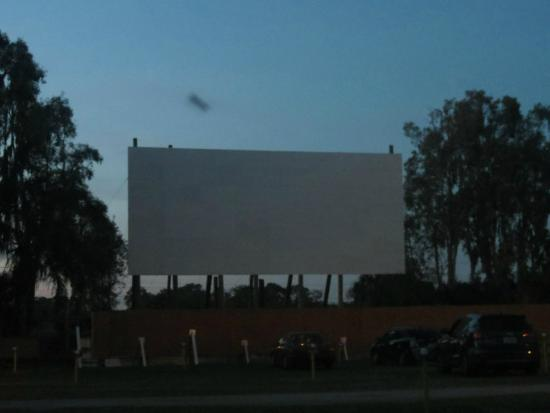 Ruskin Family Drive-In: another screen view