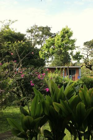 Pension Topas : Das Häuschen im Garten, wo wir gewohnt haben- etwas verdeckt
