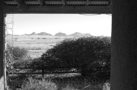 La Hacienda de Sonoita: View from courtyard