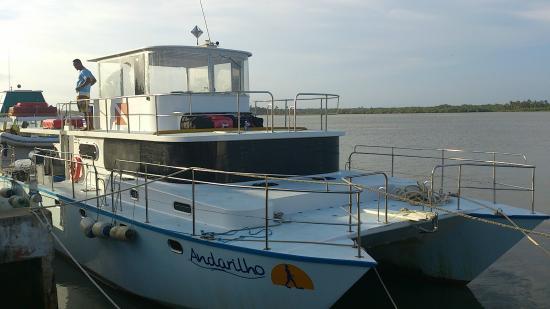 Horizonte Aberto - Catamarans