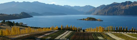 Wanaka Wine Tours: Some of the stunning scenery you'll see !!
