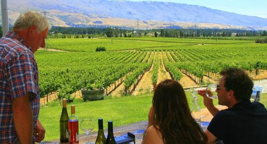 Wanaka Wine Tours: Views from Bannock Brae Estate vineyard