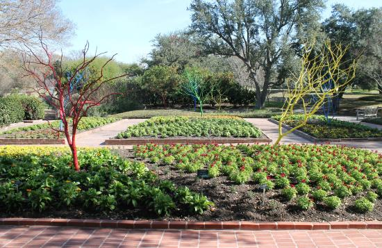 Palm Pavilion Picture Of San Antonio Botanical Garden San Antonio Tripadvisor