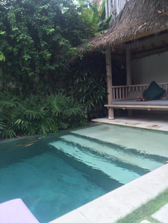 Villa Bali Asri Batubelig : 1/3 of the pool at our on bed villa