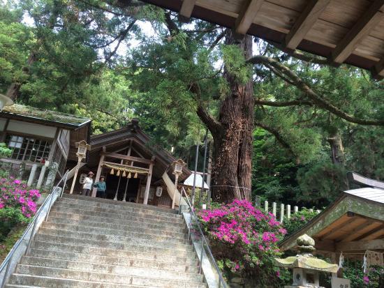 Takakura Shrine : 高倉神社