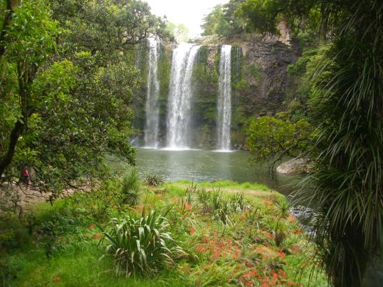 Whangarei, New Zealand: The Falls