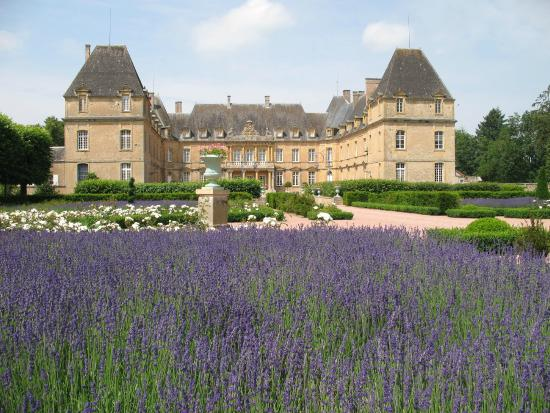 Chateau de Dree