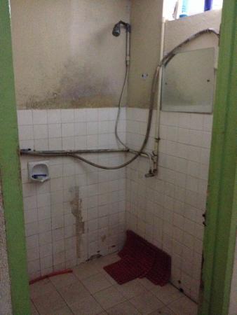 Love Lane Inn: Shower...