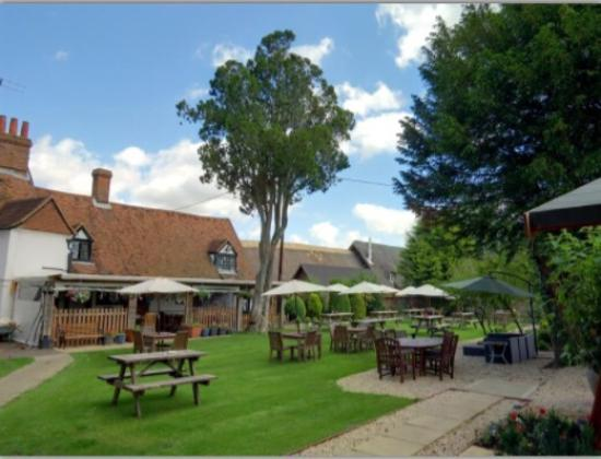 The Plough at East Hendred: The garden