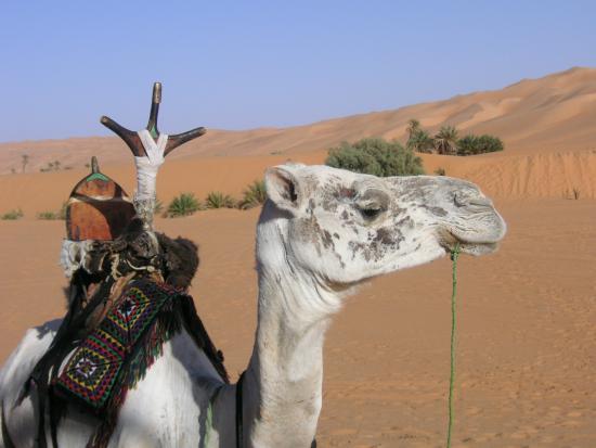 Akakus Desert