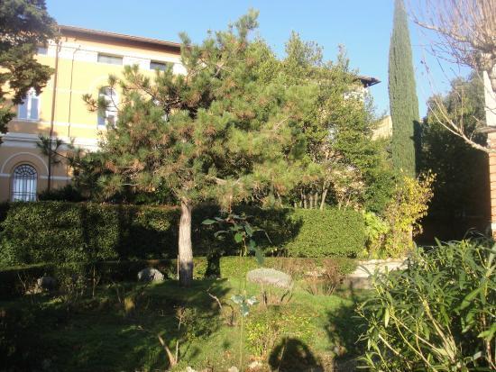 Hotel Iris : Garden