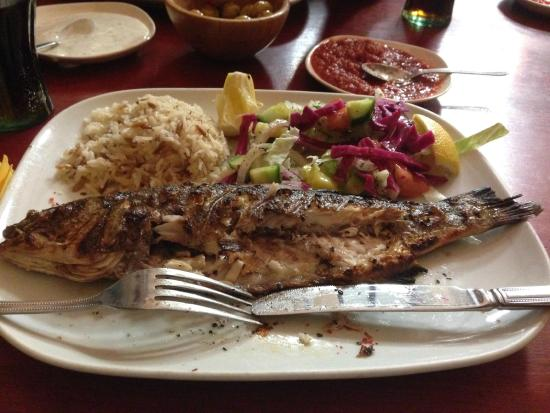 Troy: sea bass Fish meal