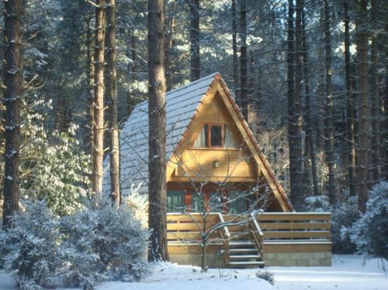 Weybourne Forest Lodges
