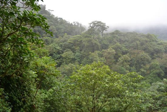 Rio Celeste : vista panoramica