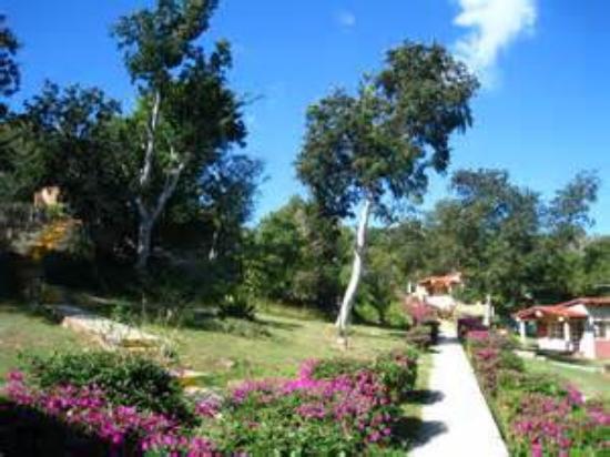 Villa Guajimico: along all the paths were beautiful gardens