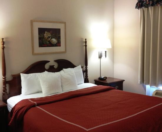 Suite King Bed Picture Of Red Roof Inn Amp Suites Albany